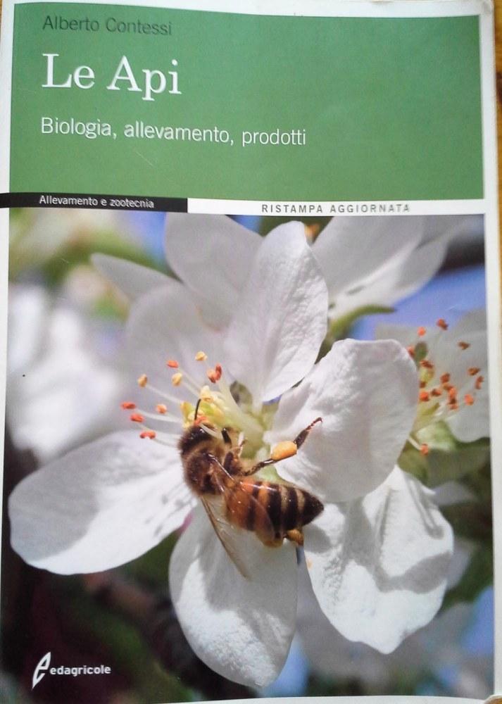 Documentarsi su api e miele (1/4)