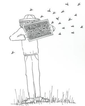 leo e le api2