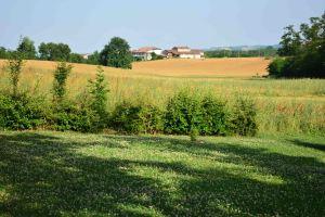 paesaggio_millefiori