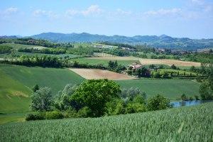 paesaggio_millefiori_2