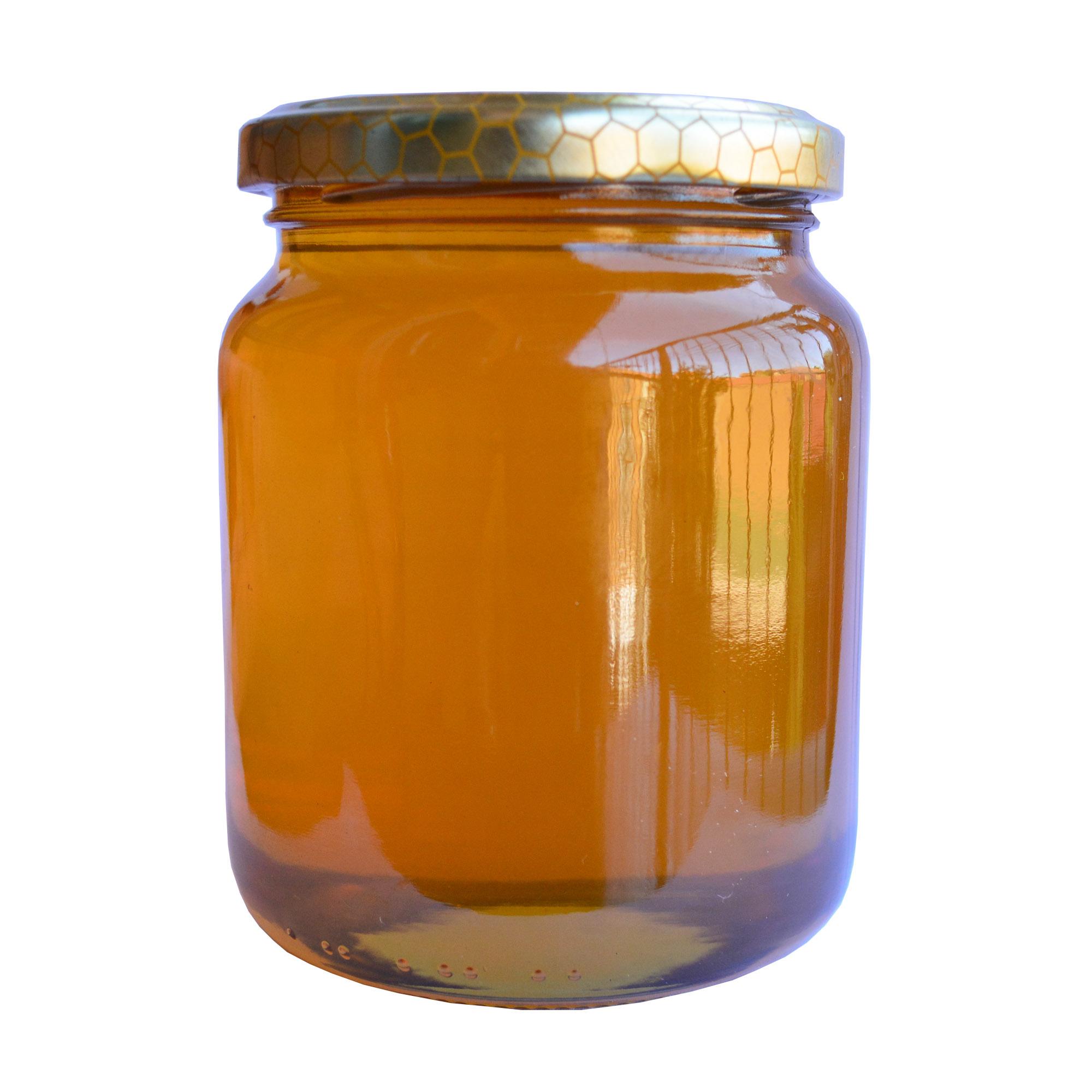 Eccezionale Miele di Rododendro | il miele di Leo XX36